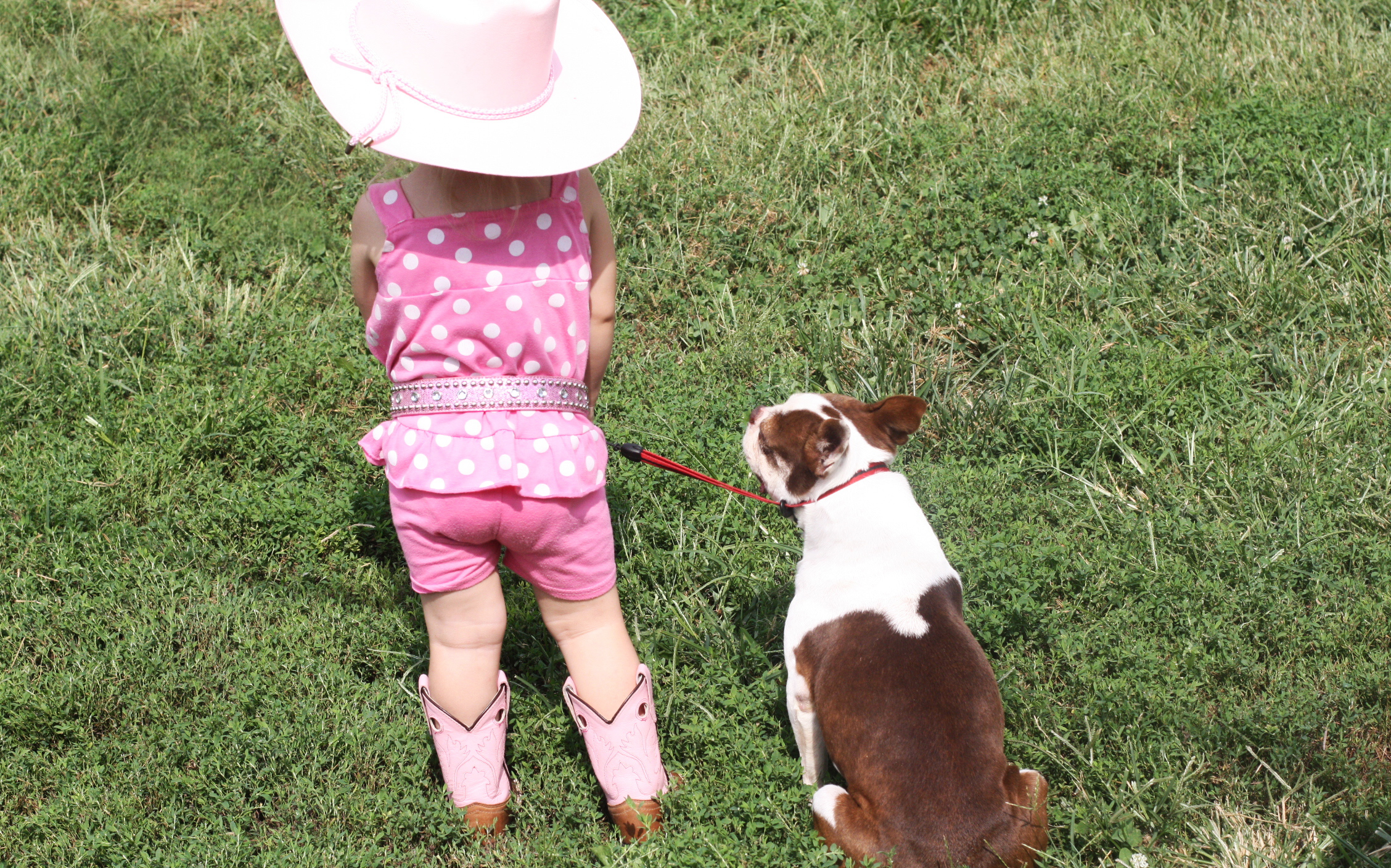 "This is Lily and BamBam contemplating if she has enough ""Pink Cowgirl"" stuff on."