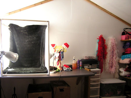 This is our kennel photography room.  This is where Ronessa takes all of our wonderful puppy pictures at that you see on our website.